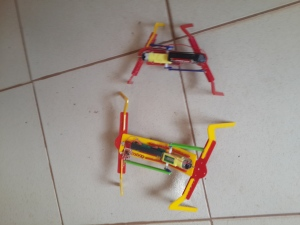 Arachnid Robots - Alien or Not?